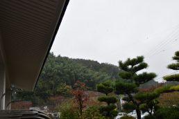 雨ニモ負ケズ 風ニモ負ケズ
