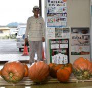 ジャンボかぼちゃの到着です!