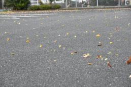 木枯らし 激しい雨 雷 11月11日の午後