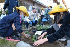 稲津小学校 ステキな花壇ができました!