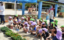 幼児園も花いっぱい!
