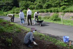小里川ホタルを守る会 整備作業